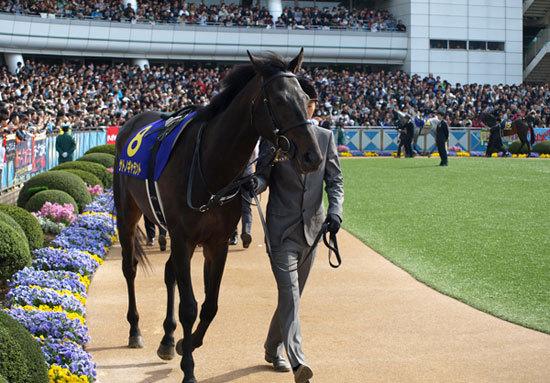 武幸四郎、田中博康など新人調教師7名を徹底解剖。管理馬、馬主、デビュー週の勝負馬は?