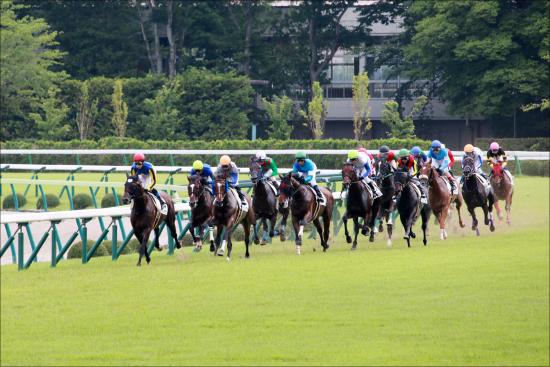 JRA「古参馬主」が札幌記念を席巻! 「サクラ」「ナリタ」伝統の一撃が炸裂