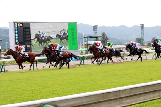 【京都牝馬S(G3)展望】好走馬の活躍が目立つ注目重賞!連勝中のミスパンテールは古馬牝馬戦線の中心となれるのか?の画像1