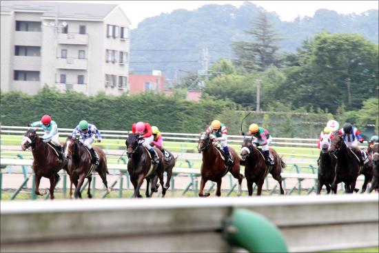 JRA福島競馬「玉突き落馬」の大惨事......柴山雄一騎手ら2名「骨折重症」合計8頭が落馬する「不吉過ぎる」1日