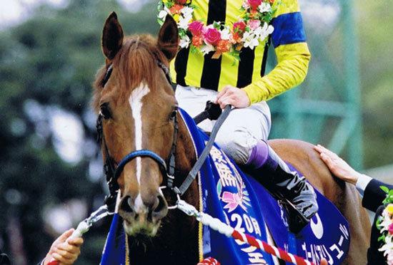 【追悼】悲運のダート最強馬ゴールドアリュール。武豊と目指したドバイワールドカップ。