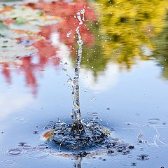 groundwater0312.jpg