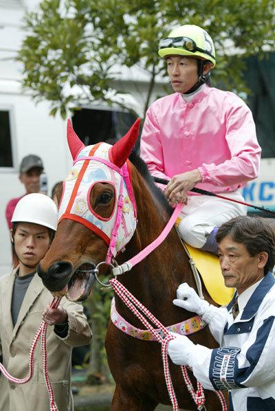 将棋界の新星藤井聡太四段の29連勝で思い出すドージマファイターの29連勝とハルウララの113連敗