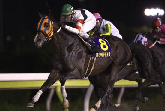 ホッコータルマエ、JRA所属馬初「大井で引退式」へ! 未だ衰えぬ「ダート界のレジェンド」最後の勇姿を見届けよう