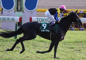 【馬券の狙い目】今週から5週連続GIレースが行われる東京競馬場。ここを苦手とする意外なトップ騎手とは?