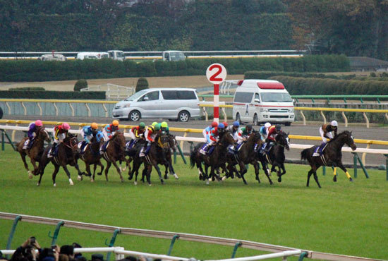 JRAも「G1同日開催」を増やすべき? 香港春競馬「大変革」に日本競馬の進化を求める声も......