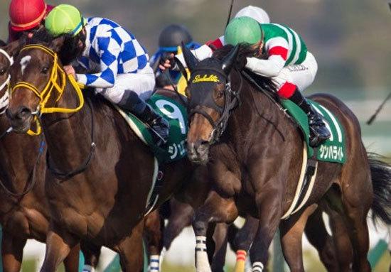 ジュエラーのローズS(G2)大敗の真相究明「桜花賞馬はもう終わったのか」張り巡らされる「煙幕」秋華賞に向けての「戦い」はすでに始まっている