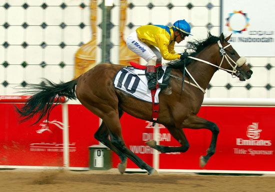 JRA「海外招待馬」急増のワケ......裏には日本競馬ファンの財布を狙う現地主催者のしたたかな野望の画像1
