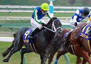 【プロキオンS(G3)展望】武豊マテラスカイがキングズガード連覇を阻む? 充実目立つ4歳馬が古豪に挑む!