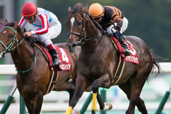 【徹底考察】京都大賞典(G2) キタサンブラック「現役最強を示した宝塚記念。名馬から歴史的名馬への飛翔に向け、唯一の死角は『武豊の計算』か」