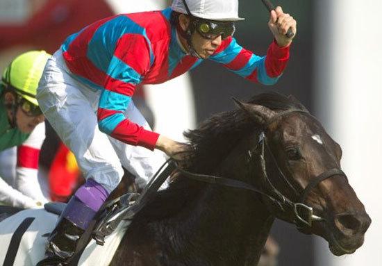 【ケンタッキーダービー出走特別連載】物語は続いていく。4人のホースマンの夢を繋いだ日本ダービー馬「絆(キズナ)」の物語<3>