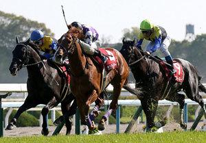 帝王モーリスに挑戦状を叩き付けるのはどの馬か! 安田記念に向けて大注目のマイラーズC(G2)