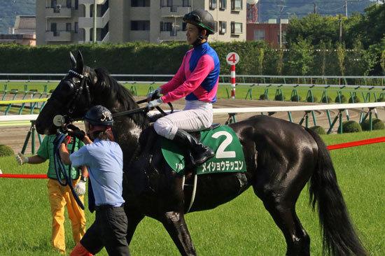 JRA神戸新聞杯(G2)「上がり馬筆頭」メイショウテッコンを狙え! 松山弘平気合充分
