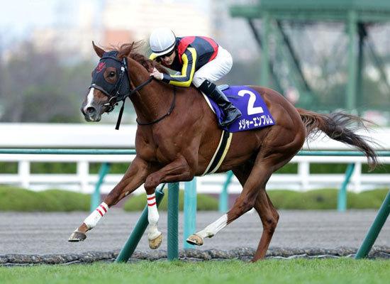 メジャーエンブレム引退......世代屈指の素質馬も故障には勝てず、枯渇する古馬牝馬路線