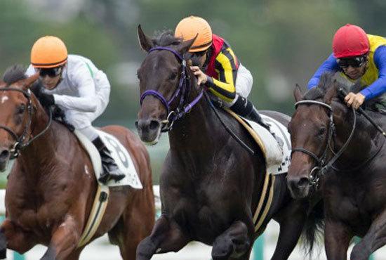 ムーヴザワールドが共同通信杯(G3)から始動で混迷の牡馬3歳界に覇を唱えるか! タッチングスピーチ全弟の不安点は鞍上のスイッチ?