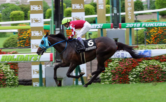 武豊オジュウチョウサン「圧勝」で次のレースは「アレ」!? 夢広がる平地挑戦は続く!