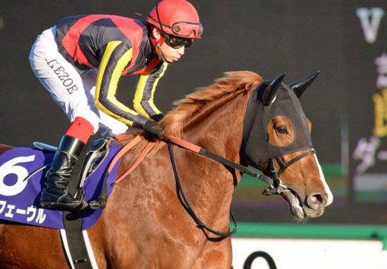 「オルフェーヴル×ディープインパクト」の最強コンビの未来は!? 日本最高の血を持つ素質馬の「心配」は?