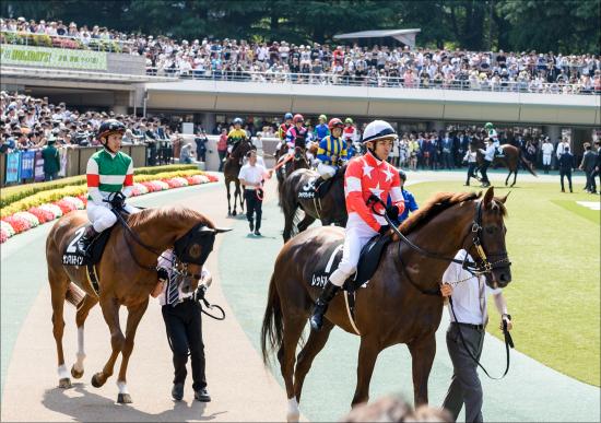 中京記念(G3)ダノンリバティが超抜時計! サマーマイル王を目指す典型的「夏馬」が絶好調モードに入った「明確な理由」