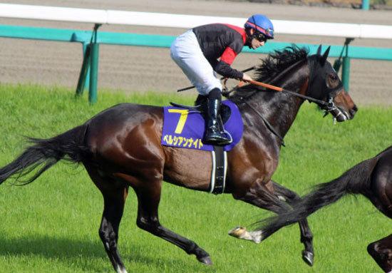 【神】M.デムーロ騎手「絶好調」VS「大不振」ペルシアンナイト!? マイルCS(G1)3歳馬「16連敗中」の理由とはの画像1