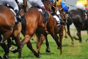 競馬ファンに朗報!来年から海外レースの馬券も買える!日本競馬の国際化がさらに進展?の画像1