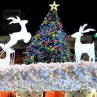 今年のクリスマス消費、なぜ「高額」「癒やし」に人気殺到?ホテル、食品、日用品…