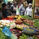 国民を愚弄するTPP論争 農産品の自由化交渉が始まっている!