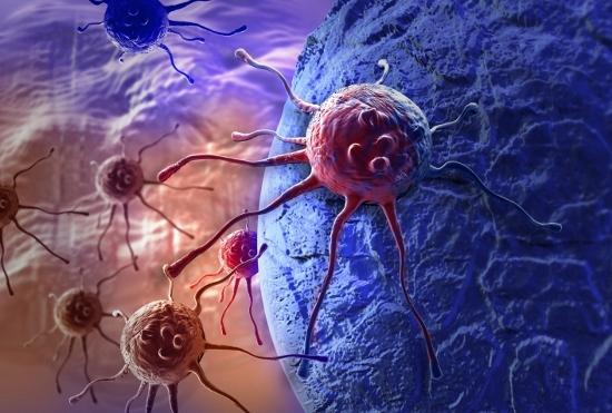 致死率99%、すい臓がんの恐怖 決定的な治療なし、原因はたばこ・肥満・飲酒の画像1