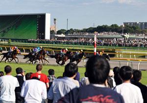 百万円が1億円に?勝ち組続出の「競馬投資法」…インサイダー情報で万馬券年間3百本!
