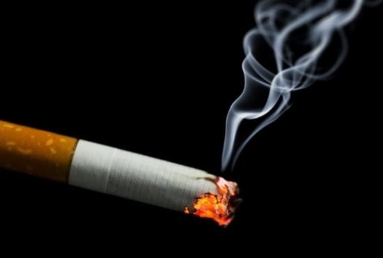 小倉智昭の膀胱がん、喫煙や頭髪用染料で罹患率激増!高年男性の血尿は要注意!尿道から内視鏡の画像1