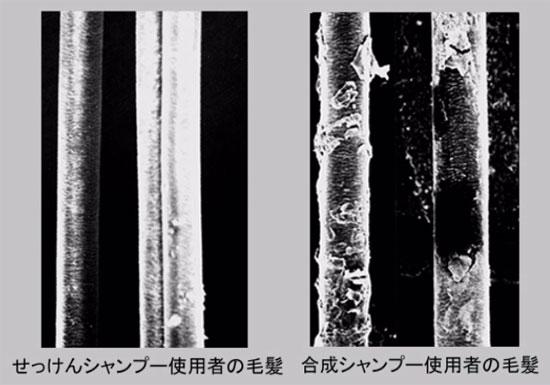 トニックシャンプーは使用NG!ハゲや抜け毛の恐れ、危険な成分配合、毛穴の油は必要