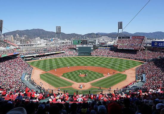 実は今、プロ野球が空前のブームだった!球場満員続出でチケット入手困難、カープと横浜は観客激増
