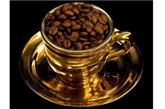 世界一高価なコーヒーは、ジャコウネコの糞からつくられていた!信じられない誕生の秘密の画像1