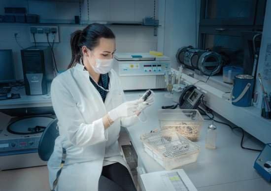 食品添加物、人間での安全性試験をしていなかった!動物試験のみ、有害作用情報の収集をせずの画像1