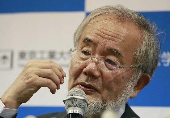 日本の科学研究、知られざる深刻な地盤沈下の実態…論文の被引用数の圧倒的少なさ