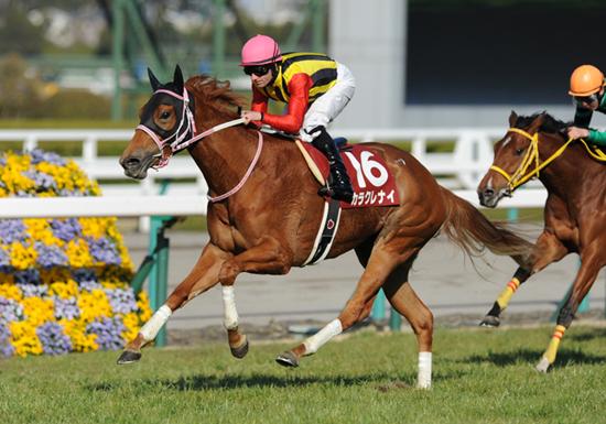 NHKマイルC、大波乱で特大万馬券の可能性…注目すべきは人気急落中の「あの馬」