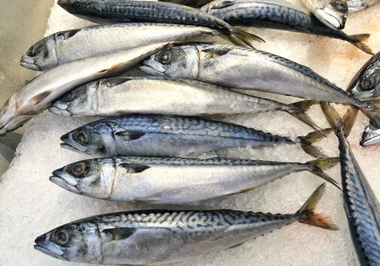 スーパーでこんな陳列の魚は危険…ラップせず氷上に放置、菌増殖で食中毒の恐れの画像1