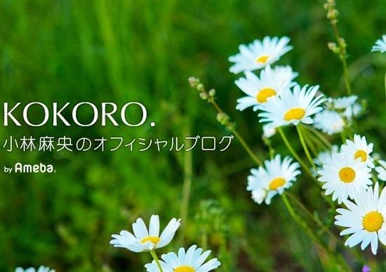 小林麻央さん、今後のがん治療に計り知れない影響…「延命重視」の日本の医療に一石の画像1