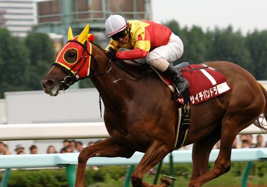 高畑充希もオススメ、夏競馬こそ競馬の魅力満載…高額万馬券連発、臨時収入のチャンス!