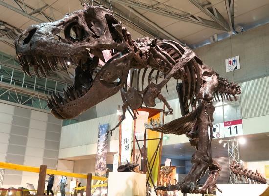 夏休みに必見!「ギガ恐竜展」が大迫力!ティラノサウルスの3つの謎&戦いの痕跡を堪能