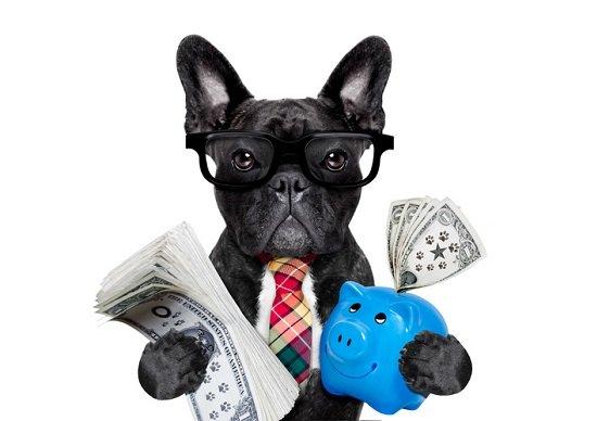 銀行様、もう少し企業を助けてください!「ダメです」の一点張り、保身のため企業見殺し…の画像1