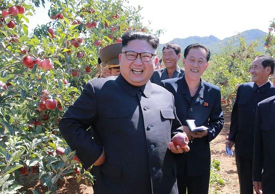 米国、北朝鮮・金正恩殺害を計画…11月までに軍事攻撃も、在韓米国人の退避準備へ