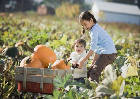 田舎でのんびり親・祖父母のサポート受けて子育て!急増する孫ターンの「意外な落とし穴」