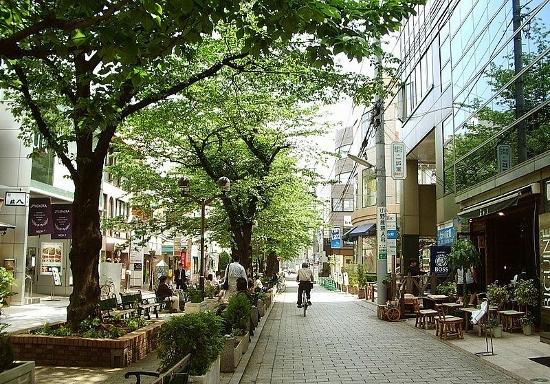 なぜ社長は世田谷区に住む?東京23区「社長が住む街・住まない街」