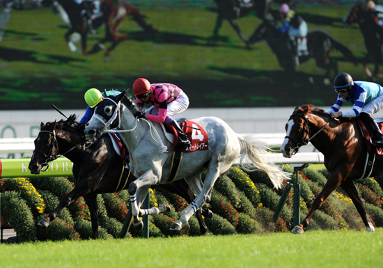 北島三郎、競馬でも大儲け…キタサンブラックの獲得賞金総額、驚愕の15億円!