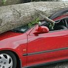 また高齢者の負担を若者が背負うのか…自動車の任意保険料なぜ値上げ?