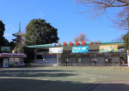 上野と足立区がホットスポット化…新宿と渋谷に迫る賑わい