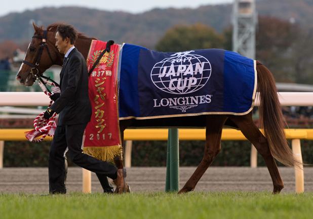 小嶋陽菜や白石麻衣…なぜ競馬番組にタレントが出演?競馬予想を極めるにはコレを読め!