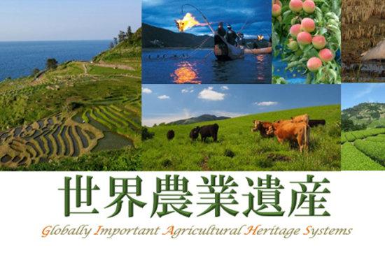 静岡と徳島の「世界農業遺産」認定、実はモノスゴイことだと知ってますか?の画像1