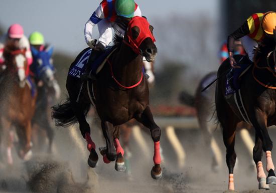 大阪杯、有力馬にことごとく不安要素…史上まれに見る大混戦、軸馬はコレだ!