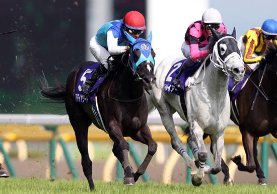 獲得賞金21億円、大魔神・佐々木主浩の驚異的な馬主成績…ヴィクトリアマイルの勝負馬は?